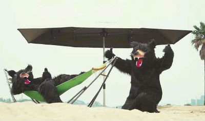 Lanmodoを使いこなす熊