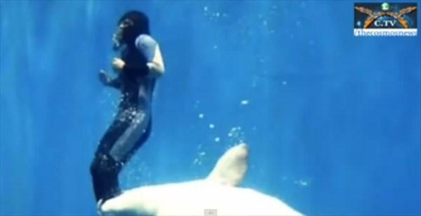 イルカと人2