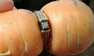 結婚指輪をはめたニンジン