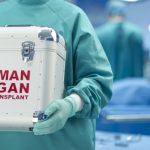 【閲覧注意】闇市場でされる臓器売買。気になる臓器の値段がこちら…。
