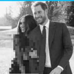 【英王室】ヘンリー王子とメーガンの婚約写真に批判殺到!