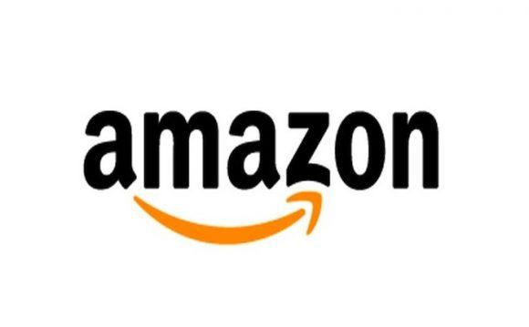 【恐怖】Amazonから届いた荷物に猛毒サソリが混入