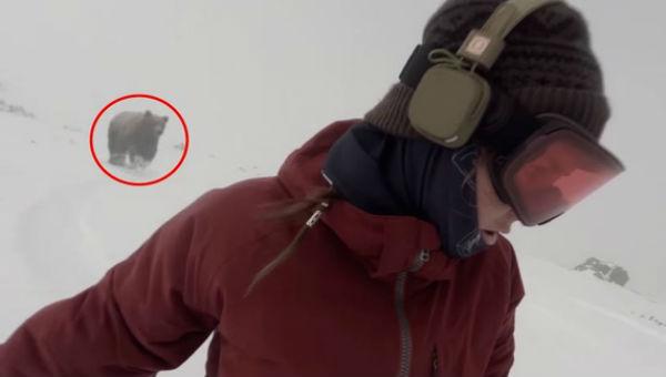 スノーボーダーを追いかけるヒグマ…その衝撃的な結末とは?!(動画あり)