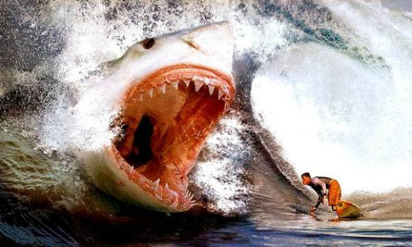 巨大サメ・メガロドンが生きていた?!クジラ2頭を丸呑みするその脅威がヤバすぎる!!