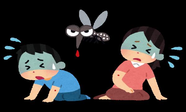【蚊に刺されやすい人必読】蚊にさされやすい人は○○が多かった!!高校生が世界的大発見!