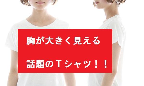 【画像あり】騙される人が続出!!胸を大きく見せることができるTシャツが話題!