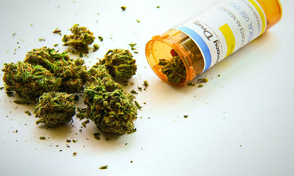 【驚愕】あの国が大麻を合法化した!その理由とは・・・