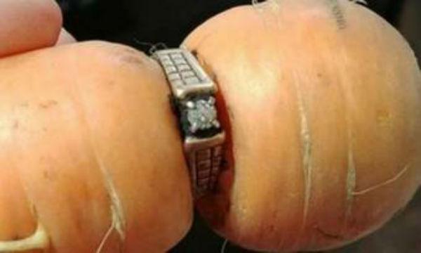 10年以上前に失くした結婚指輪をニンジンがはめていた!?これは奇跡www