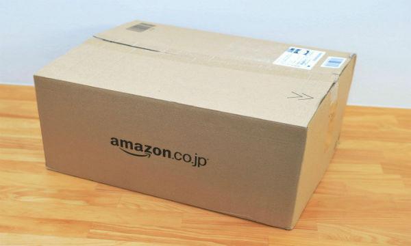 【画像あり】アマゾンで枕を注文したらモデルのショタも配達されたwww