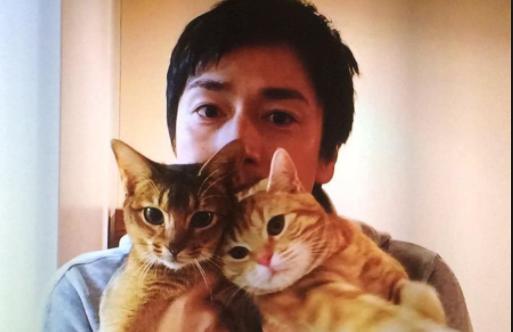 チュート徳井 猫