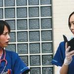 【悲報】新垣結衣と戸田恵梨香、めっちゃ不仲だった!?w w w w w w